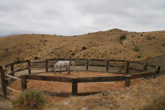 cerco para caballos con traviesas de tren
